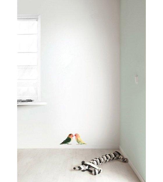 kek amsterdam wandtattoo wellensittich 23x17cm. Black Bedroom Furniture Sets. Home Design Ideas