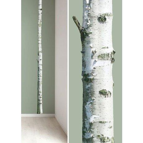 Kek Amsterdam Adesivi murali tronco d'albero 'Casa Albero 2' in vinile, marrone / verde, 8x260cm