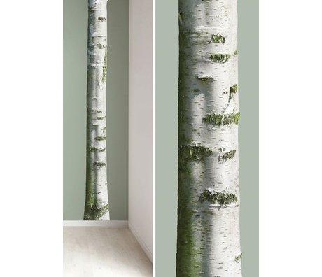 Kek Amsterdam Wandsticker Baumstamm 'Home tree 7' aus Vinyl, braun/grün, 20x300cm