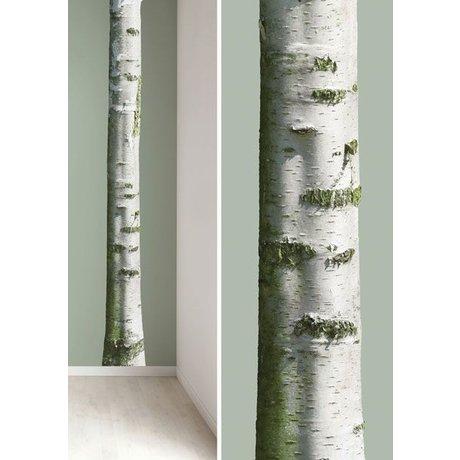 Kek Amsterdam Wall Stickers træstamme 'Home Tree 7' vinyl, brun / grøn, 20x300cm