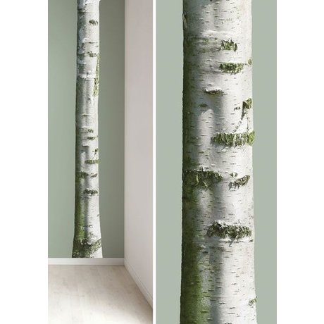 Kek Amsterdam Wall stickers tree trunk 'Home Tree 7' vinyl, brown / green, 20x300cm