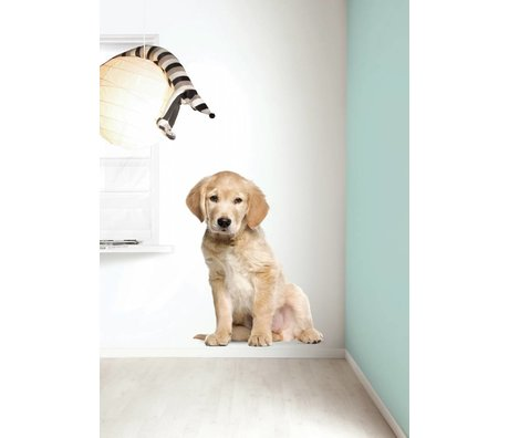 Kek Amsterdam Cachorro Tatuajes de pared XL Golden Retriever, 91x117cm