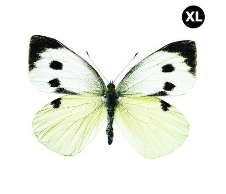 Kek Amsterdam Pegatinas de pared de la mariposa 960 XL, blanco / marrón / gris, 33x24cm