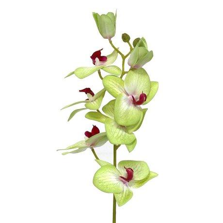 HK-living Décoration orchidées branche 71cm