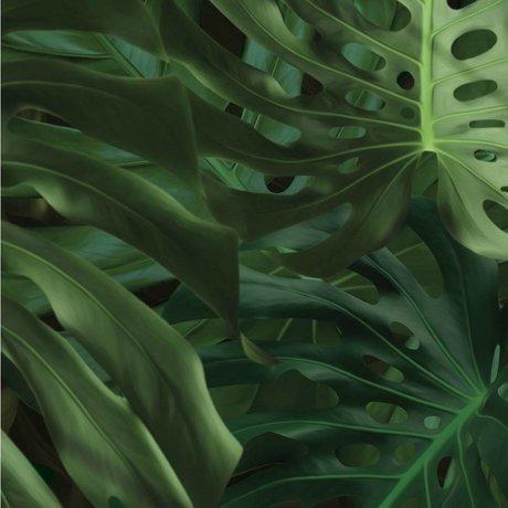 Kek Amsterdam Fondo de pantalla Tropical Monstera deja 97,4x280cm papel de seda verde