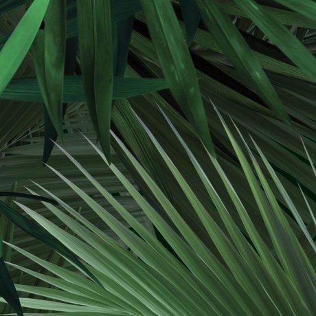 Kek Amsterdam Tapet Tropical palmeblad grøn-vævede papir 97,4x280cm