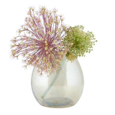 BePureHome Vaso semplice mezzo di ottone oro antico 20x20x20cm vetro trasparente