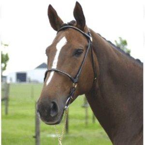 Imperial Riding Leren voorbreng hoofdstel rondgenaaid met lijn Pony