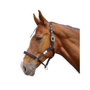 Harry's Horse Halster Controller Zwart pony