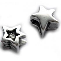 Zilver Leerschuiver ster Ø6x3mm metaal zilver DQ 13mm