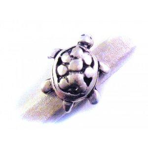 Zilver Leerschuiver schildpad Ø10x6 metaal zilver DQ 25x20mm