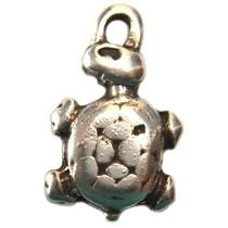 Zilver Bedel schildpad metaal zilver DQ 26mm