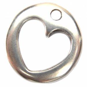 Zilver Bedel munt hart metaal zilver DQ 20mm