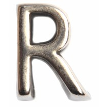 Zilver Leerschuiver R Ø10x6mm zilver DQ