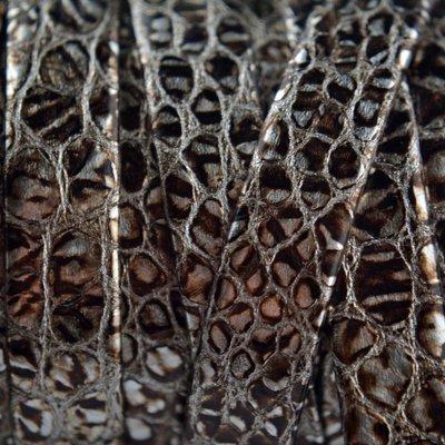 Bruin Plat nappa leer zilver bruin snake 10mm - prijs per cm
