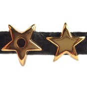 Goud Leerschuiver ster Ø5x2mm Goud DQ