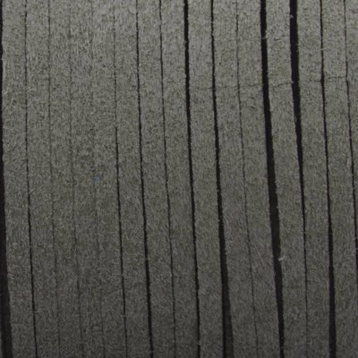 Grijs Imitatie suede grijs groen 3x1,5mm - 3 meter
