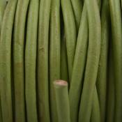 Groen Leer rond appel groen 3mm - per meter