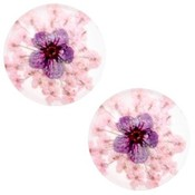 Roze Cabochon gedroogde bloemetjes Light pink purple 20mm