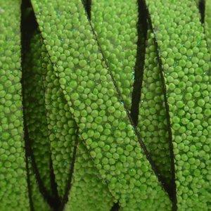 Groen Plat synthetisch Kaviaar leer groen 10x2,5mm - prijs per cm