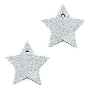 Grijs Leer hanger ster klein Light grey 25mm