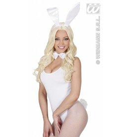 Verkleedset glitter bunny