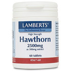 Lamberts Hawthorn 2500 mg 60 tab