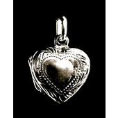 zilver medaillon: heart in heart