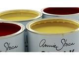 Annie Sloan Chalk Paint Tester