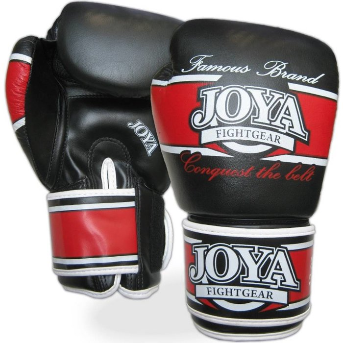 Shiv Naresh Teens Boxing Gloves 12oz: FIGHTWEAR SHOP EUROPE