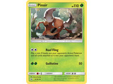 Pokémon Pinsir 6/149