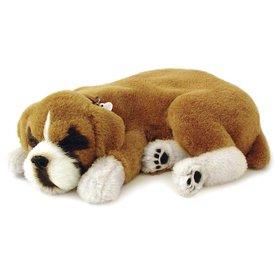 CD3 Perfect Petzzz Boxer Puppy