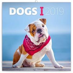 Dieren & Wildlife Kalenders 2019