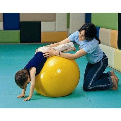Gym Bal Anti Burst  ( 65 cm)