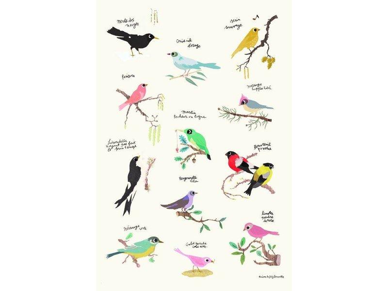 Tinou le joli Senoville poster birds