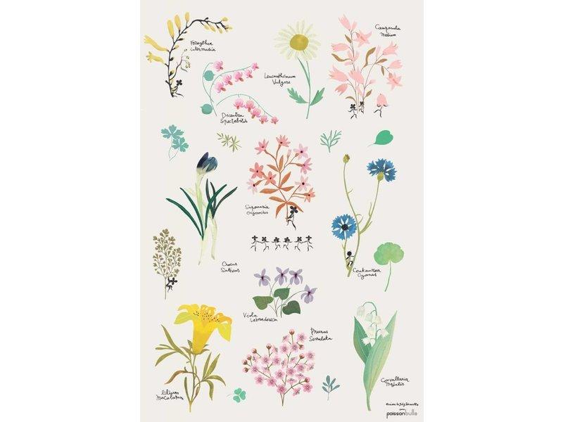 Tinou le joli Senoville poster botanic