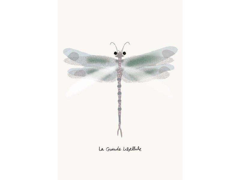 Tinou le joli Senoville kaart libelle