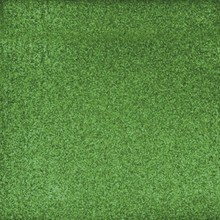 Designer Papier Scrapbooking: 30,5 x 30,5 cm Papier Scrapbooking-Papier: Glitter  immergrün