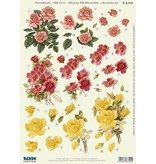 """BILDER / PICTURES: Studio Light, Staf Wesenbeek, Willem Haenraets 3D Die Hojas sueltas: 3 diseños diferentes """"Roses"""""""