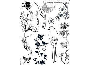 Stempel / Stamp: Transparent Kanban, stempel motiv, transparent, Birds of Paradise, 14 x 18 cm.