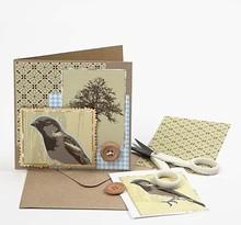 KARTEN und Zubehör / Cards Juego de 10 tarjetas y sobres + guía de imagen gratuita para una tarjeta nostálgica + Diseñador Gratis Paper Series