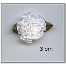 10 Satijnröschen 3 cm