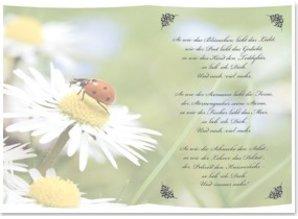 BASTELZUBEHÖR / CRAFT ACCESSORIES 5 Gennemsigtige papirer, ark A5, digte så meget som jeg har dig