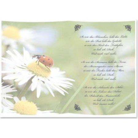 BASTELZUBEHÖR / CRAFT ACCESSORIES 5 Transparentpapiere, Bogen A5, Gedichte So gerne habe ich dich