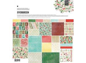 DESIGNER BLÖCKE  / DESIGNER PAPER Designere blok, Basic Grey - Evergreen - Collection Pack