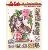 Bücher und CD / Magazines 3D Papier A5, CATS
