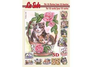 Bücher und CD / Magazines 3D carta A5, CATS