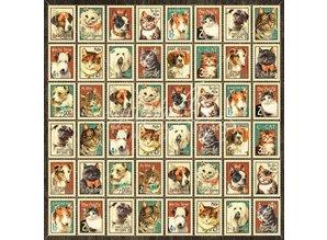 """Graphic 45 Diseñador de papel """"lloviendo gatos y perros -Sr. Bigotes"""", 30,5 x 30,5 cm"""