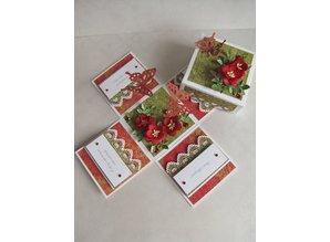 KARTEN und Zubehör / Cards opciones básicas: 5 cajas Explorer (sin adornos)