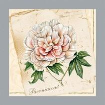 A set of 5 different designer napkins: floral motifs